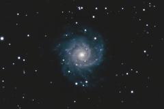 The Phantom Galaxy (M74)